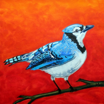 #96 - THE BLUE JAY (1)