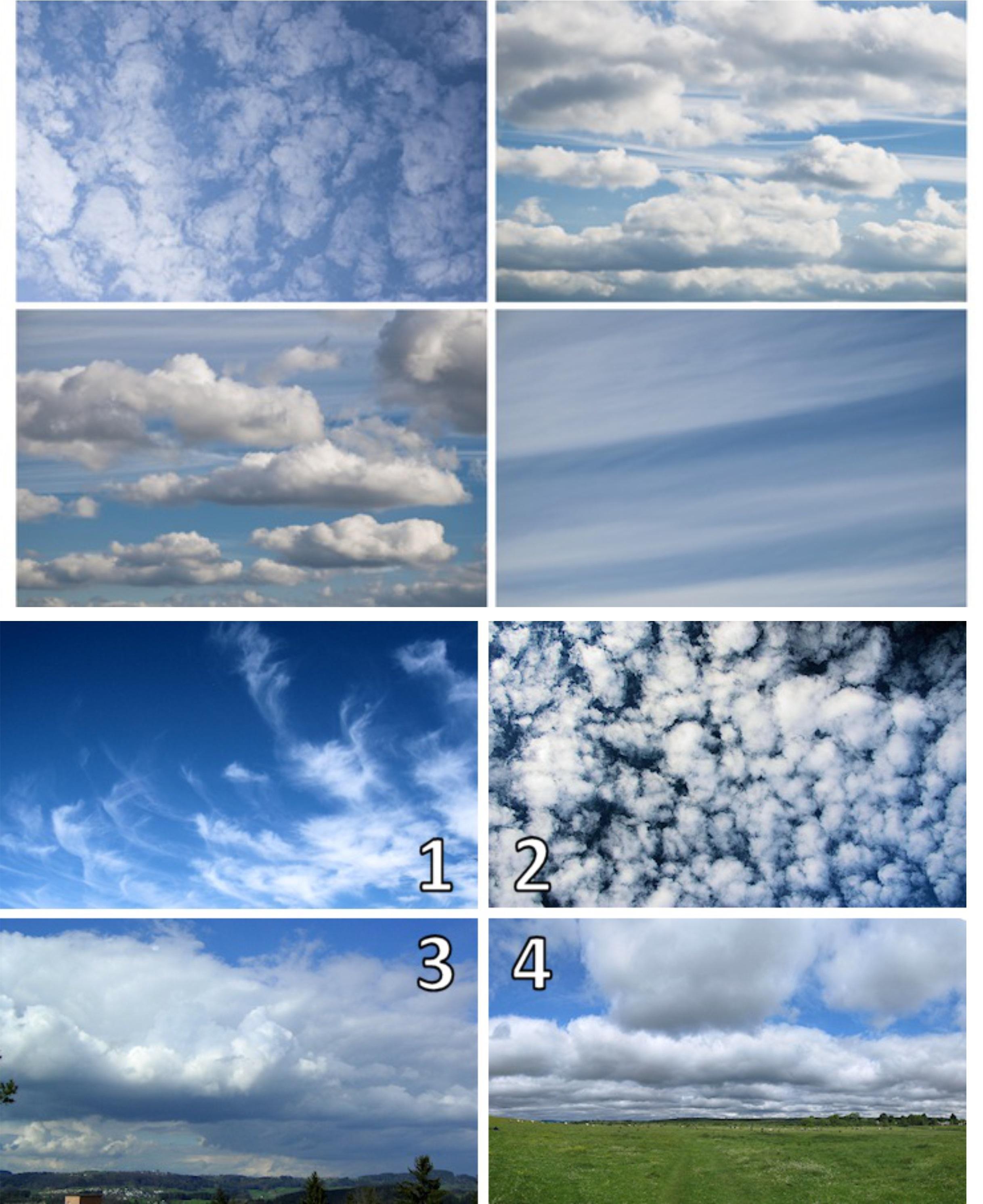 cloud kinds1
