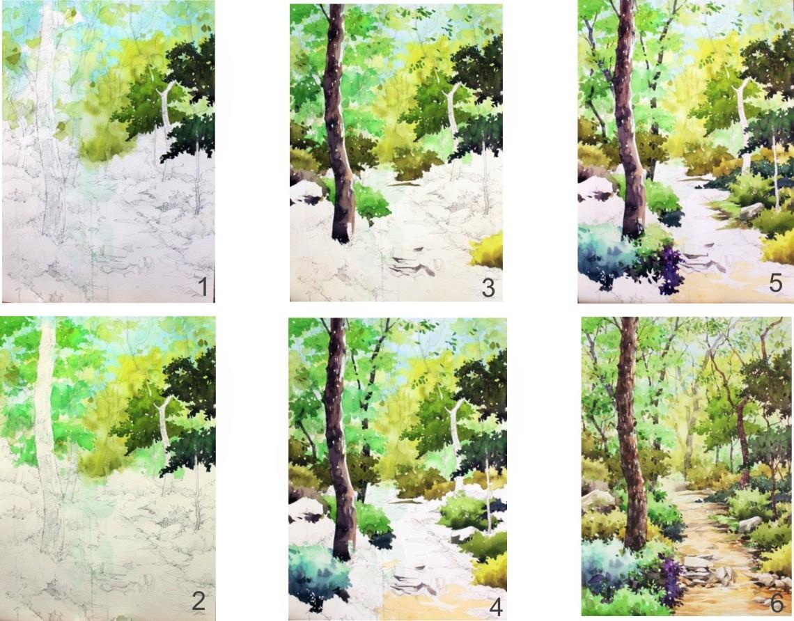 trees woodsb