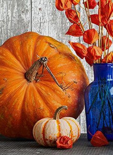 pumpkins (4)