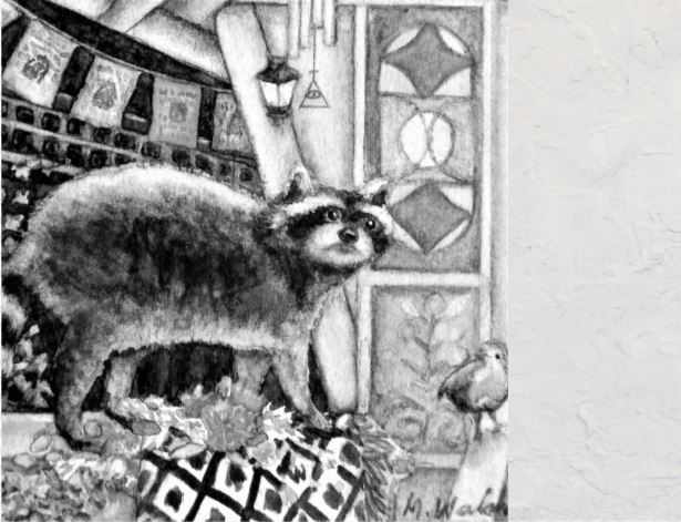 crop raccoon